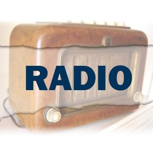 Audio: Cricket ball smashes through commentary box window